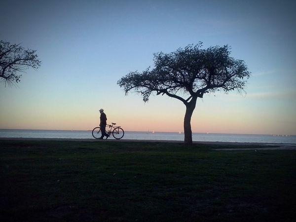 Relaxing Atardecer Bicicleta Rio Paisaje Natural Paz ✌ First Eyeem Photo