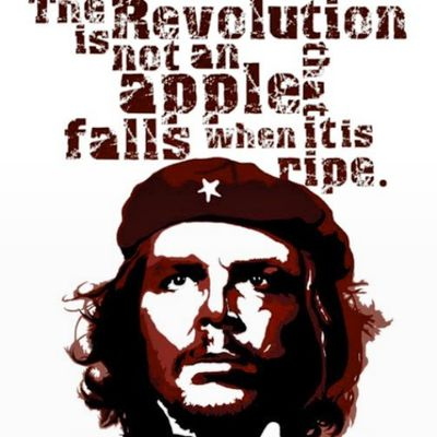 """The Revolution is not an apple that falls when it is ripe. You have to make it fall."" ~Che Guevara"