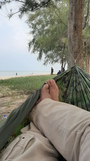 Low section of man lying in hammock