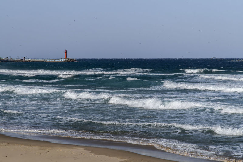winter Hwajinpo Beach in Goseong, Gangwondo, South Korea Hwajinpo Beach Sea Water Horizon Horizon Over Water Land Beach Sky Nature Clear Sky Wave Beauty In Nature Outdoors Motion Aquatic Sport Sport Scenics - Nature Surfing People Day Power In Nature Lighthouse