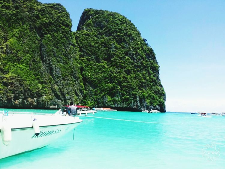 Maya Bay Phiphi Island Island Phuket Phuket Island Beautiful Nature Beach Ocean Turquoise Colored Turqouise Water Travel Ocean View Mayabaybeach