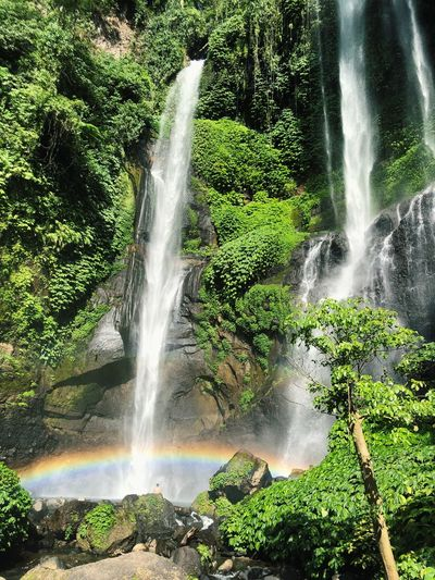 Sekumpul Waterfall Bali Friendly Exploring Explore Love Rainbow Adventure Calm Bali Freedom Naturelove Water Motion Beauty In Nature Nature Plant Scenics - Nature Splashing Waterfall Green Color Tree Sunlight Power In Nature No People Outdoors Day Flowing Water