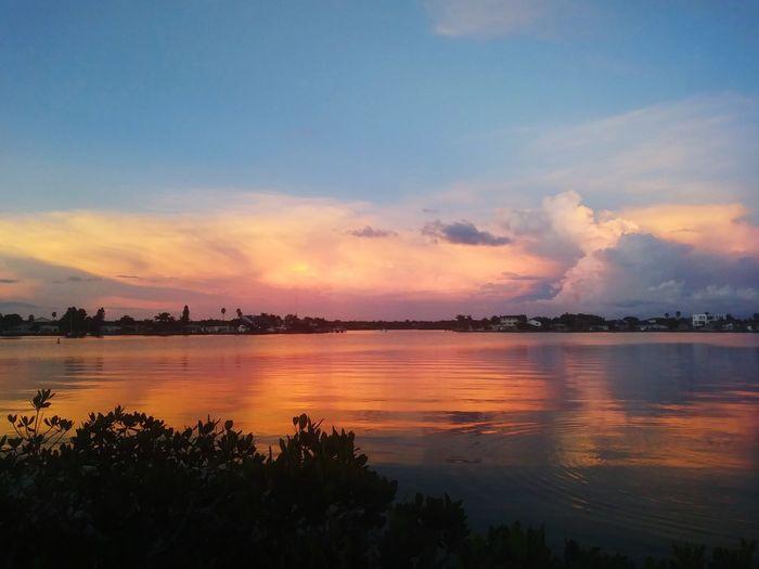 EyeEm Best Shots Florida Ocean Intercoastal Waterway St. Petersburg, Florida Tampa Bay Water Tree Sea Sunset Multi Colored Beach Beauty Silhouette Reflection Summer Seascape Dramatic Sky Moody Sky Cloudscape Romantic Sky