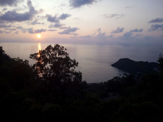 Jijel Couher De Soleil Algeria Nature Nature_collection Beauty In Nature Tree Water Sea Sunset Silhouette Sky Horizon Over Water Cloud - Sky