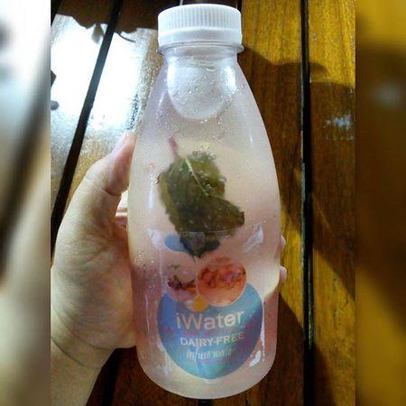 My infused water today : lemon, mint and pomegranates. Healthy Freshwater Detoxification Lemon Mint Pomegranates  Fruits Instafruit Drink Instahealth November2015