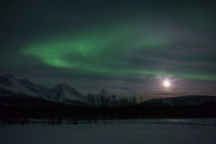 Aurora Borealis over the Lyngen Alps, Norway Arctic Astronomy Aurora Aurora Borealis Auroraborealis Beauty In Nature Cold Frozen Landscape Moonlight Mountain Nature Night Photography Nightphotography Northern Lights NorthernLights Norway Polar Night Remote Sky Snow Snow Covered Tranquil Scene Tromsø Winter