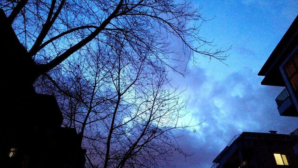 Sky Before Dark Getting Dark Blue Sky Evening Sky