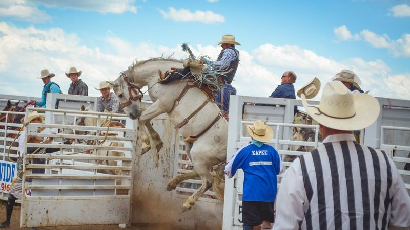Men People Outdoors Day Crowd Rodeo Horse Riding Bareback Riding