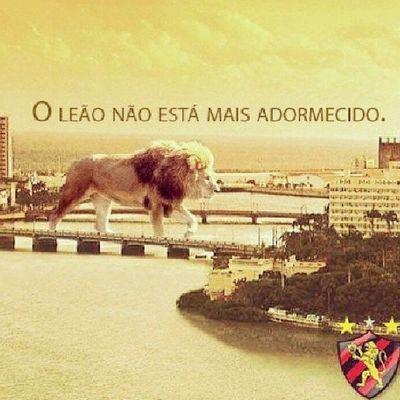 Sport SportSerieA Sportrecife SportSerieA O, o leão voltou... PapaiDaCidade
