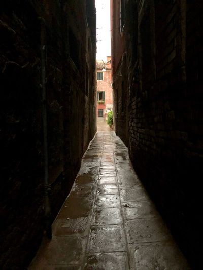 Venice... EyeEm Selects Direction The Way Forward Architecture Built Structure No People Building Exterior City Diminishing Perspective Outdoors Alley Wall - Building Feature Building Nature Street Day Narrow Footpath Wall Empty Sunlight