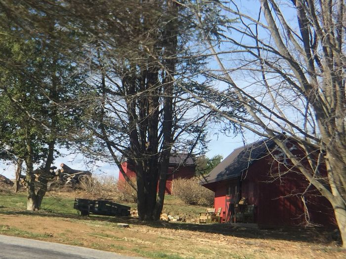Tree Building Exterior Built Structure Architecture Bare Tree Outdoors House No People Sky Day Branch Nature p Pennsylvania Beauty Parksburg Pennsylvania