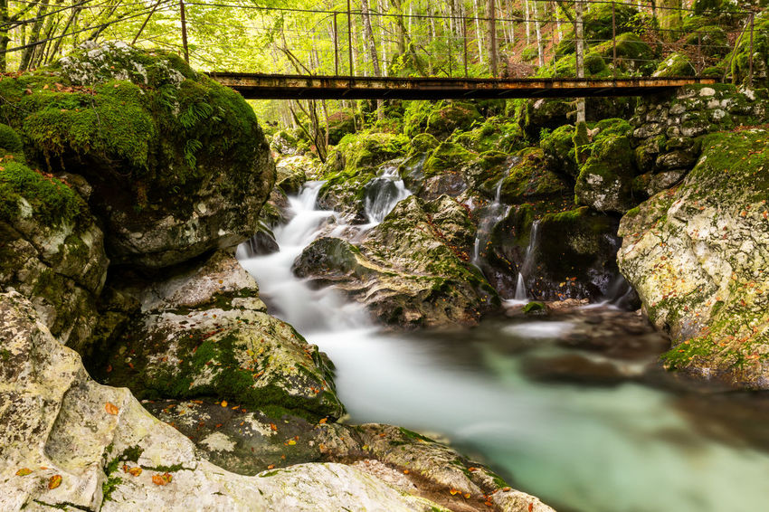 Fast flowing mountain stream under a footbridge Rock Water Rock - Object Long Exposure Blurred Motion Beauty In Nature Scenics - Nature Forest Moss Waterfall Nature Stream - Flowing Water Outdoors Falling Water Flowing Water Motion WoodLand Mountains Stream Stream Boulder Boulders