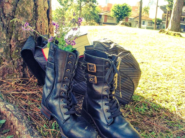 Day Sunlight Outdoors Tree Grass Nature Close-up EyeEmNewHere No People Nature Fragility Public Space Photography Cwb City Cwb Brazil EyeEm Selects Flowers Collection  Flowerpower Flower Boot Boots Boots On The Ground Backpack Bookphoto