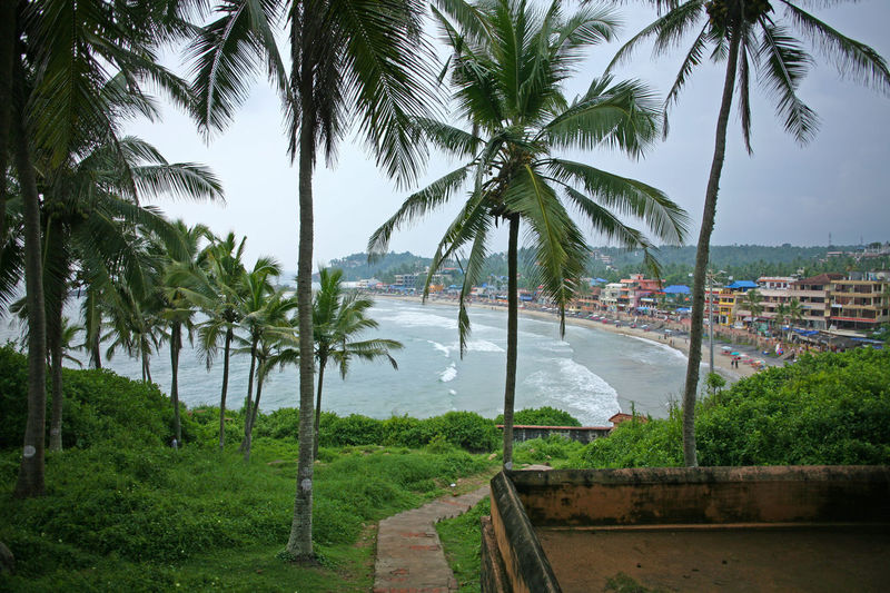 Kerela, India Kovalam Kovalam Beach Thiruvananthapuram Beach Beauty In Nature Kerela Nature Outdoors Palm Tree Palm Trees Scenics Sea Travel Destinations Tree Trivandrum Water