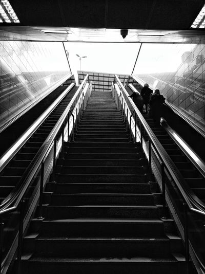 black Steps Steps And Staircases Indoors  Staircase Railing Built Structure Illuminated Architecture Day People Adult blackandwhite Photography Themes All_shots Beautiful ♥ blac Looking At Camera EyeEm Selects Albumdenyansıyanlar Tourist Attractions Discovery Center Nationalgeographicturkiye Allshotsturkey Urban Photography Ig_today✨🌟💫 Istanbul Sky EyeEm Ready   AI Now EyeEmNewHere Fashion Stories Shades Of Winter Business Stories The Graphic City Mobility In Mega Cities This Is Masculinity Stories From The City