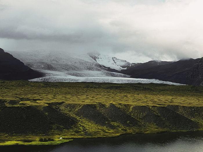 iceland.. Moss
