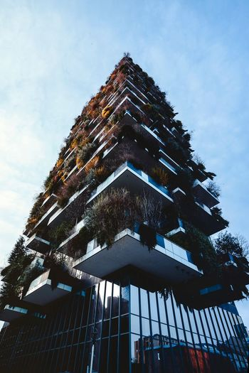 Low Angle View Sky Built Structure Architecture Building Exterior Cloud - Sky Tree Tower Office Building Exterior Outdoors Tall - High Nature No People Modern Building City Day Travel Destinations Religion Plant