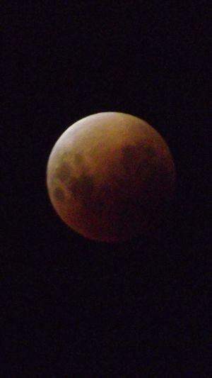 EyesEm Selects Blue Moon Moon Moon Surface Moon Shots Finepix Series