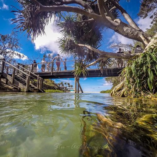 Largest freshwater creek on the east coast of Fraser Island Sunshine Landscape Queensland Australia Water Canon Goprohero4 Swimming