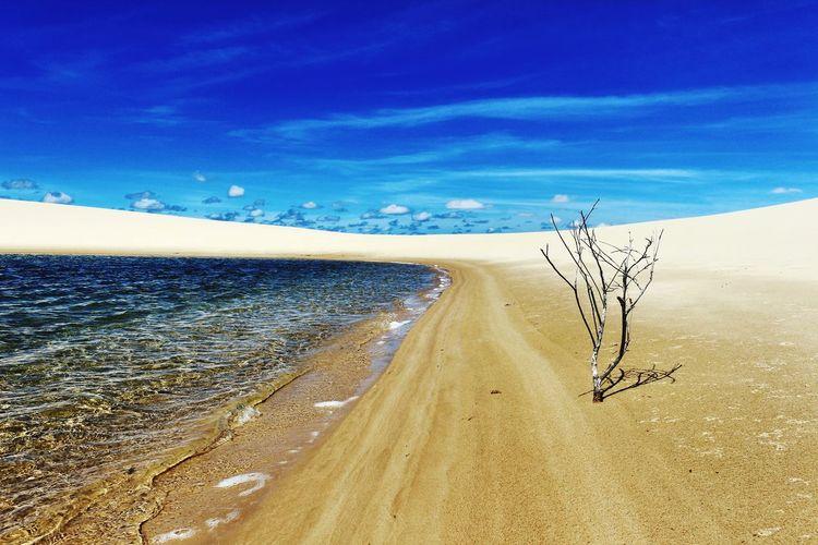 Water Beach Sea
