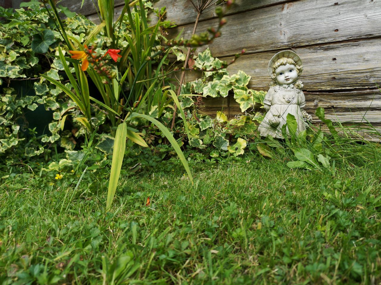 plant, growth, no people, representation, day, green color, nature, human representation, grass, land, creativity, field, leaf, outdoors, art and craft, plant part, male likeness, front or back yard, beauty in nature, sculpture