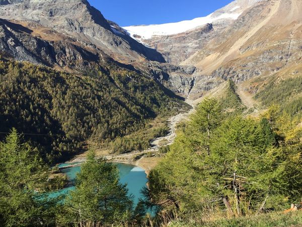 Landscape Switzerland Autumn colors Fall Beauty Sunny Day Scenic View Lake Autumn Natural Light Beauty In Nature Mountain Tranquility Scenics - Nature Plant Tranquil Scene Tree Mountain Range Outdoors Sunlight Growth Sky Water Day Nature Landscape Environment Green Color Non-urban Scene No People