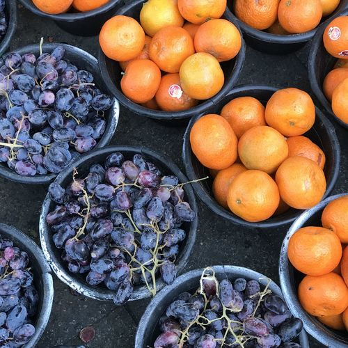 High angle view of fruits in container