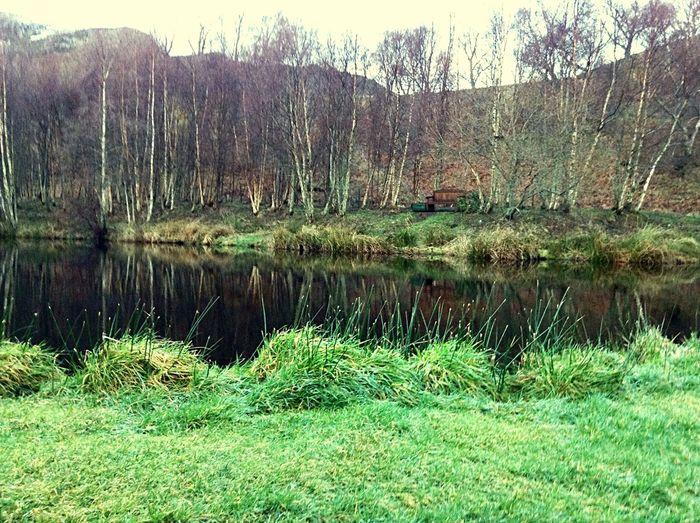 In Scotland