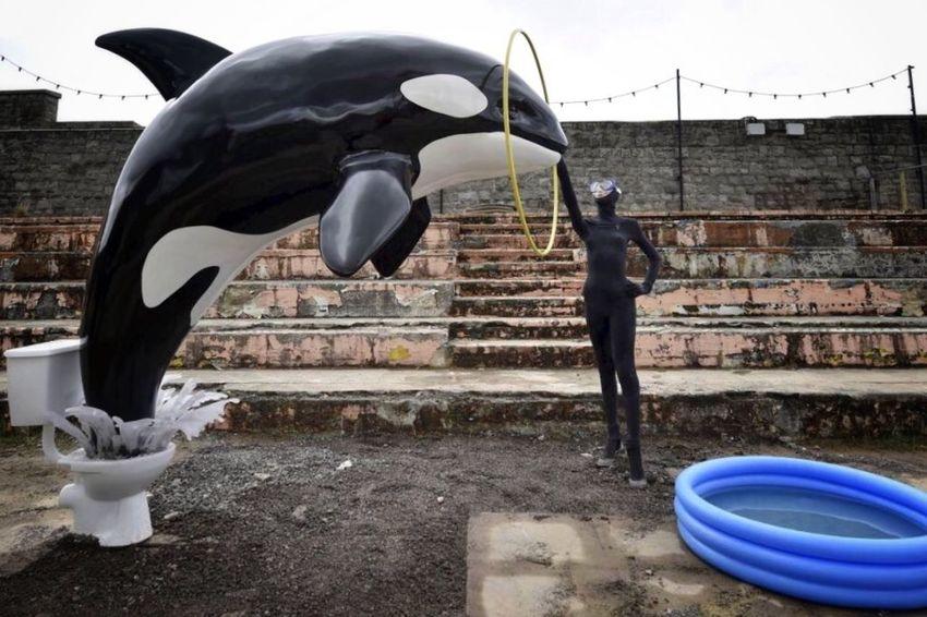 killer whale - banksy Dismaland®