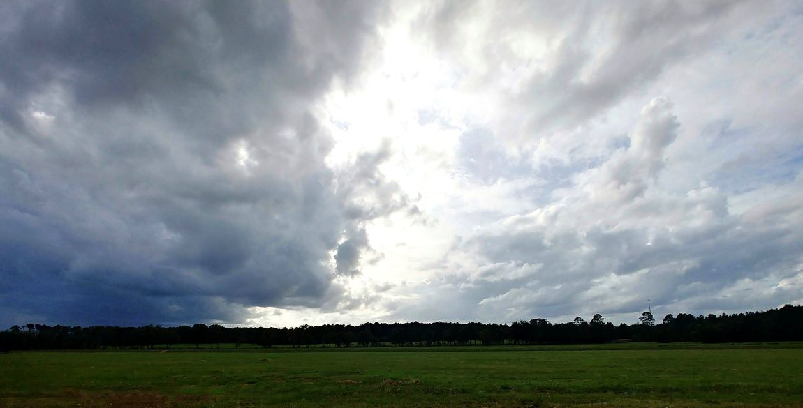 A storm a'comin. Nature Sky Outdoors Beauty In Nature No People Wide Angle No People Tree Taking Photos Mobile Photography Storm Cloud Stormy Weather Stormy Sky LGV30 LGV30photography