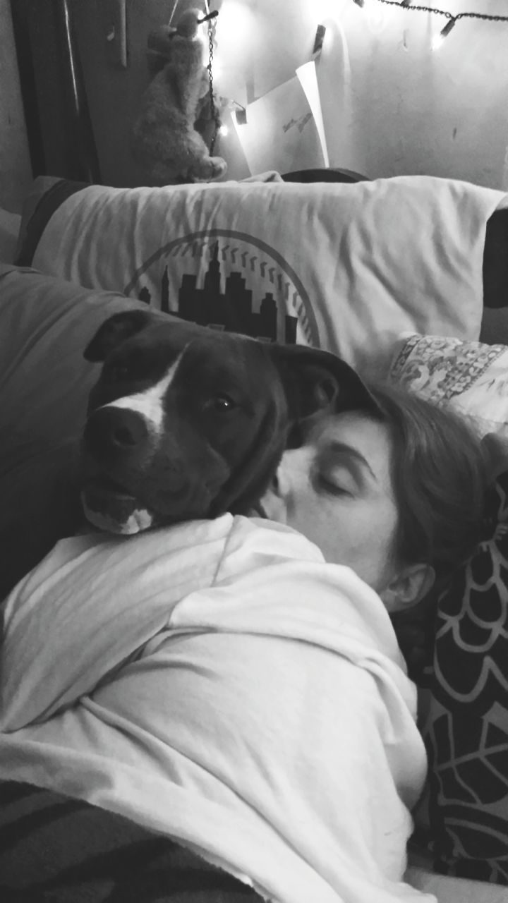 dog, pets, one animal, domestic animals, sleeping, indoors, animal themes, mammal, bed, lying down, eyes closed, relaxation, one person, comfortable, real people, home interior, pillow, day, young women, young adult, close-up, people