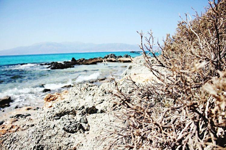 Seaside Blue Sky Dreams Where R U, Summer?!