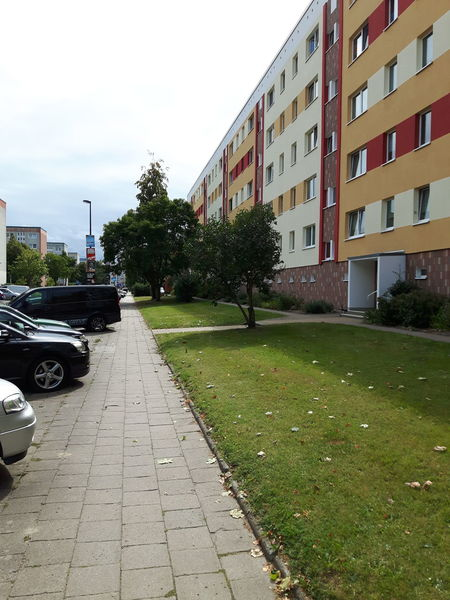 Architecture Balticsea Blumen Building Exterior Built Structure Car City City Life Day Flowers Footpath Grass Growing In Front Of Land Vehicle Lüttenklein Mode Of Transport No People Ostsee Outdoors Parking Stationary The Way Forward Transportation Tree
