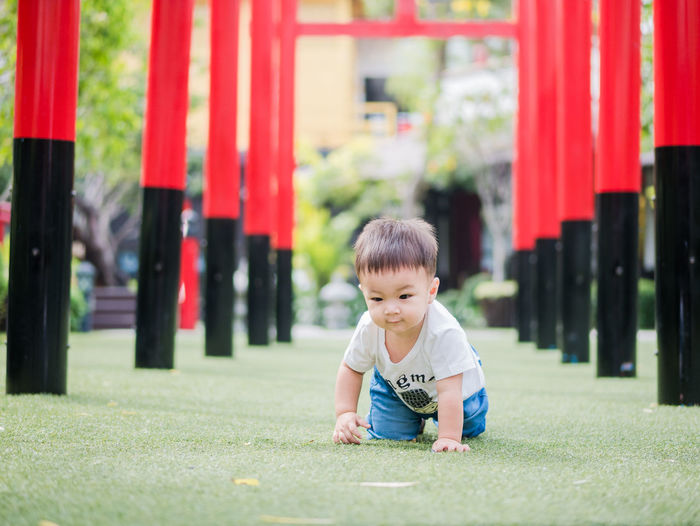 Baby Boy Playing On Grass Amidst Torii Gates At Park