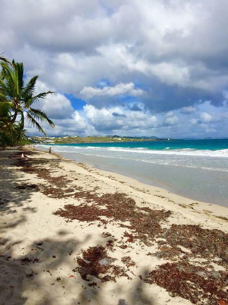 Sea Sunshine Martinique Plage