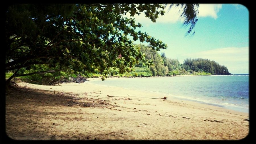 Day At Beach