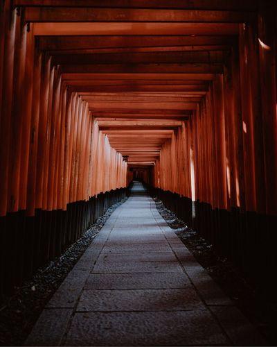 Fushimi Inari with the torii gates path. Fushimi Inari Shrine Torii Gate TORII Japanese Temple Japan Photography Japanese Traditional Japan Shrine First Eyeem Photo