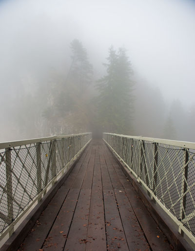 Bridge and Fog in forest Fog Tree The Way Forward Direction Cold Temperature Bridge Plant Nature Bridge - Man Made Structure Winter Forest Footbridge Connection Tranquil Scene Day Tranquility Scenics - Nature No People Architecture Diminishing Perspective Outdoors Rain