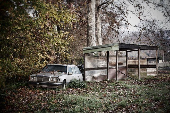 Cars Car Rusty Autos Abandoned Nature Nature_collection Leica D-lux Typ109