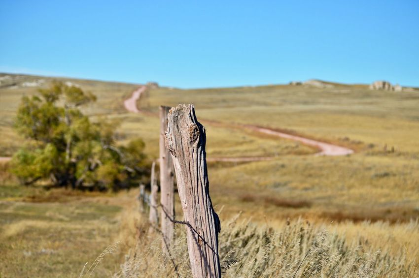 Bend in the road Wooden Post County Road West Of Lusk Wyoming In The Distance. Barbed Wire Fence Outdoors Sunshine Tree Sunny Sky Grass Landscape
