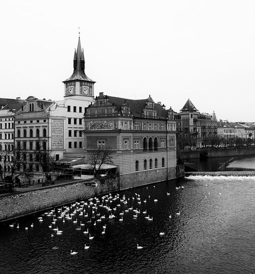Building Exterior No People Sky Built Structure City Prague Prague Old Town Beauty In Nature Beautiful Day EyeEm Best Edits Eyeem Market EyeEm Eyeemphotography Prague Time Prague Tower Praguelover Swantastic Swans Prague Czech Republic EyeEm Best Shots