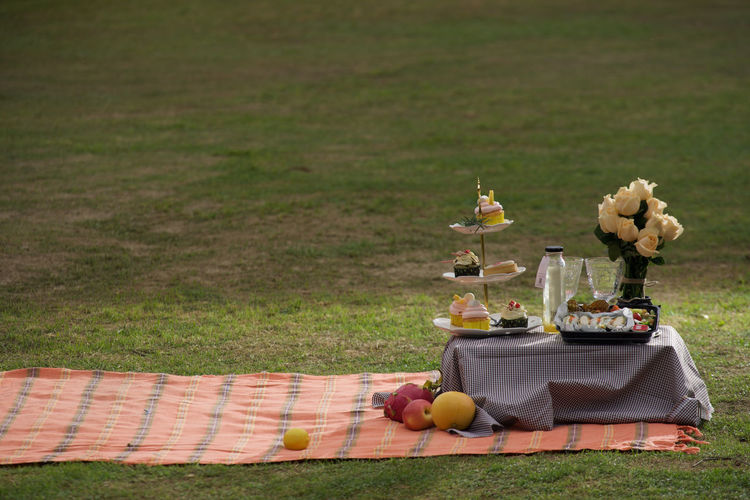 Food And Flowers On Picnic Blanket Over Grassy Field