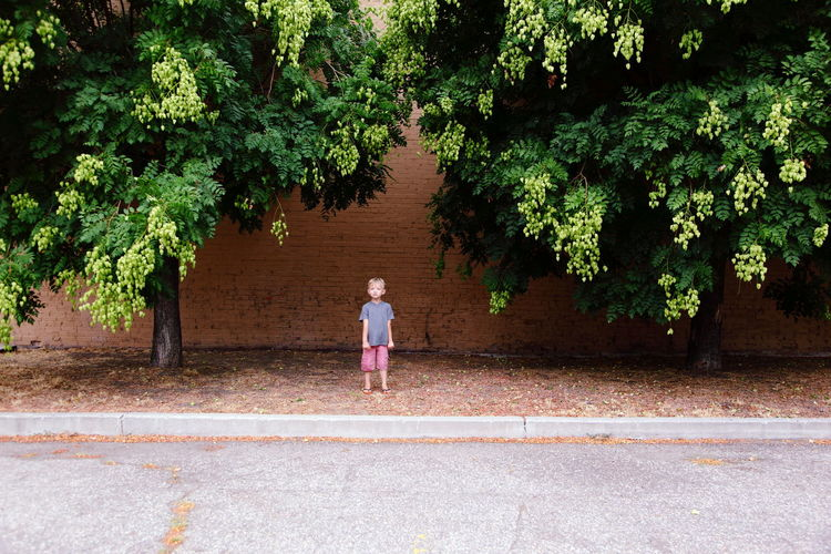 Boy Standing Amidst Trees Against Wall