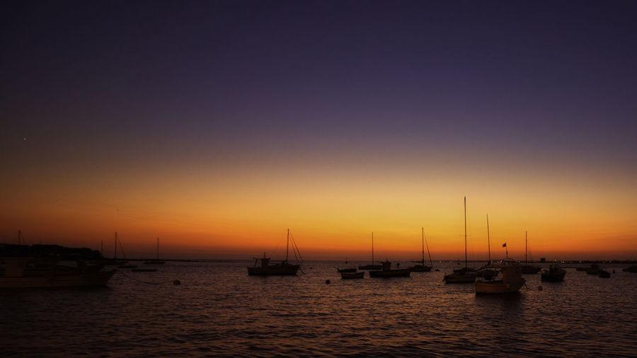 Sailboats moored in marina at sunset