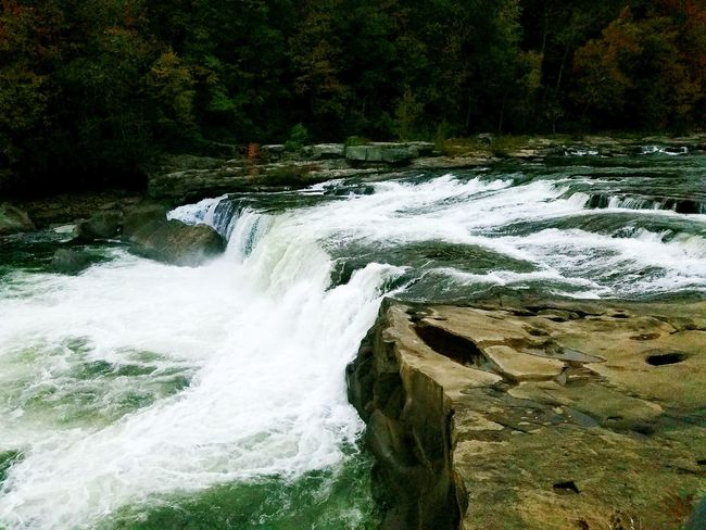 Ohiopyle Falls Waterfall River Park Water Nature No People Beauty In Nature Outdoors Tranquility Scenics Day Forest Travel Destinations