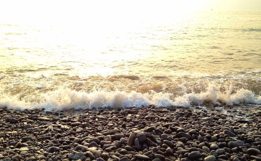 聽濤 Seaview Sunset