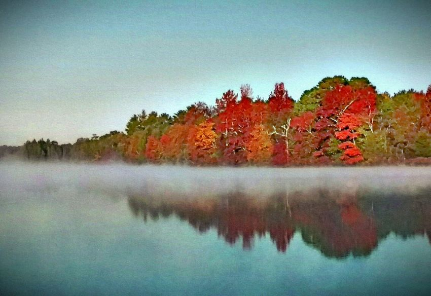Myperspective Color Photography Autumn Colors Lakeshore Foggy Morning Atsion Lake, NJ