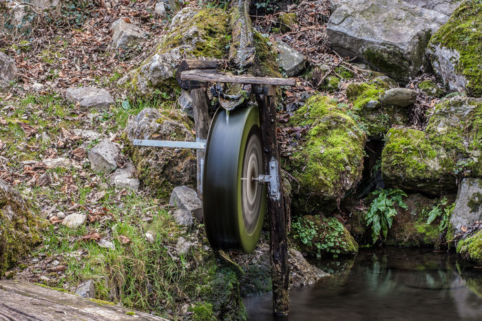 Beauty In Nature Day Green Color Growth Langbart Leaf Motion Nature No People Outdoors Pipe - Tube Plant Rock - Object Sewage Sewer Water Water Pipe Watermill End Plastic Pollution