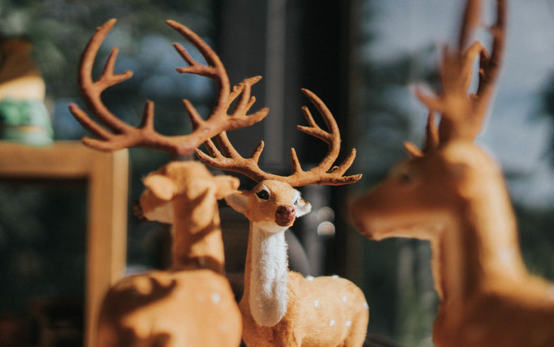 Close-up of deer sculpture