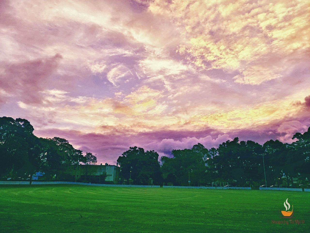 grass, cloud - sky, tree, green color, sky, nature, beauty in nature, sunset, field, tranquil scene, tranquility, scenics, sport, no people, playing field, outdoors, golf, soccer field, golf course, day, green - golf course